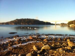 Tjörnbron och Källön